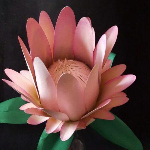 365 gg. in fiore